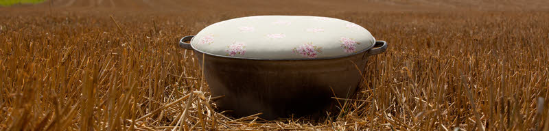 Bath tub footstool